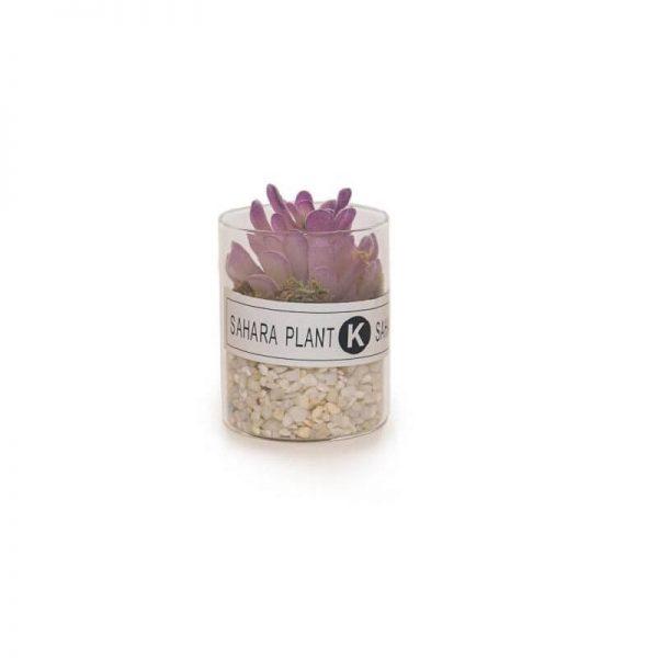 Декоративна стъклена саксия SAHARA, с изкуствен кактус и камъчета, 6.5x8 см