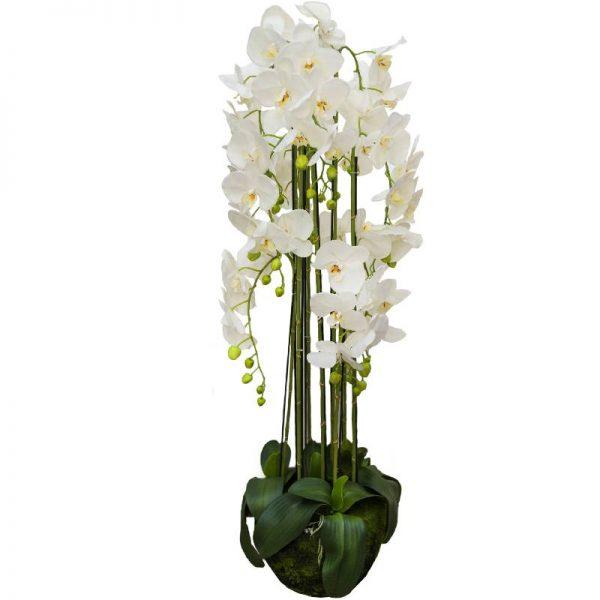 Орхидея голяма, 25*25*117см