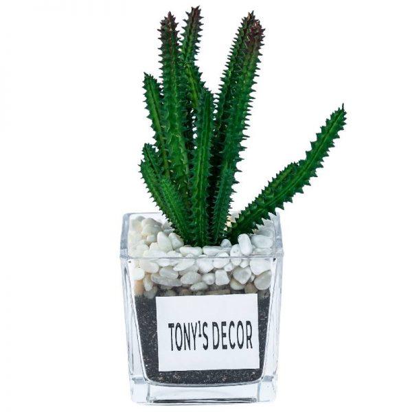 Изкуствени кактуси в стъклена кашпа, 8*8*19см