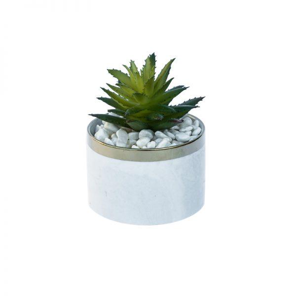 Изкуствени кактуси в кашпа, 8*8*10см