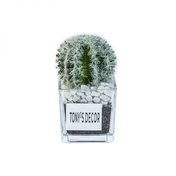 Изкуствени кактуси в стъклена кашпа, 10*10*5см