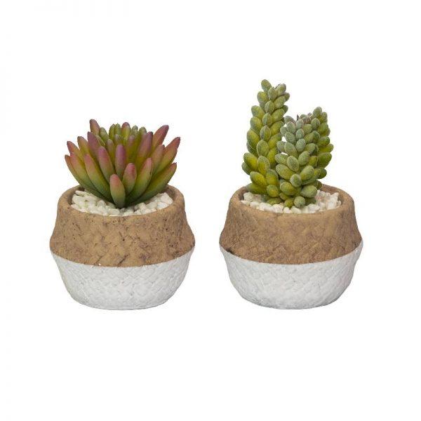 Изкуствени  сукулентни растения в керамична кашпа, 2 модела