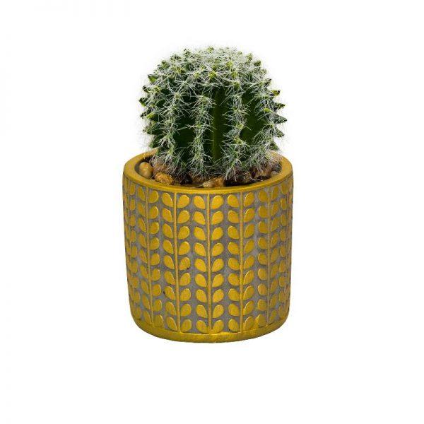 Кактус в керамична кашпа, 9,5*9,5*17 см