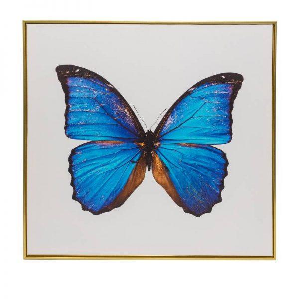 Картина пеперуда с бял фон, 80*80 см