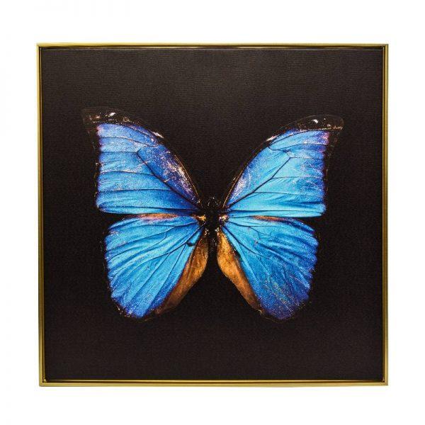 Картина пеперуда с черен фон, 80*80 см