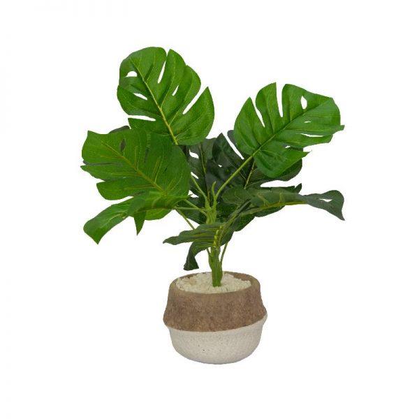 Изкуствено растение - Монстера в керамична кашпа