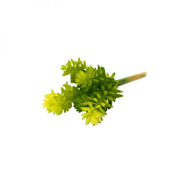 Изкуствена зелена клонка с 6 разклонения