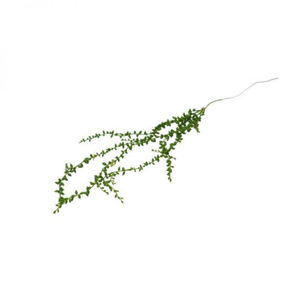 Зелено висящо растение, 90 см